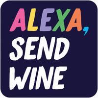 Alexa, Send Wine Funny Coaster