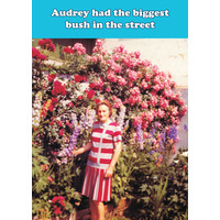 Audrey Had The Biggest Bush Funny Birthday Card