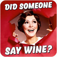 Did Someone Say Wine Funny Coaster