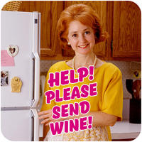 Help! Please Send Wine Funny Coaster