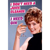 I Don't Need a Juice Cleanse I need Gin Funny Fridge Magnet