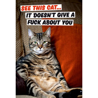 See This Cat It Doesn't Give a Fuck About You Rude Fridge Magnet